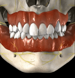 Asimetria Cirugia Ortognatica Smiles Peru